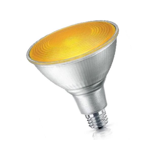 LED PAR38 COLOR